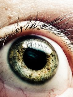 Amazing Close-up Photographs of the Human Eye and How to Make Them Yourself | Light Stalking
