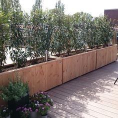 Plantenbak douglashout terrasadscheiding (4)