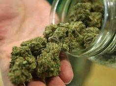 Please repin! #Marijuana Businesses Go #Mobile: http://www.kbradyservice.com/marijuana-businesses-go-mobile/