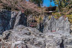 The pagoda of Ishiyama-dera Temple was built in 1194 with a donation from Minamoto-no Yoritomo. According to the temple it is the oldest and most elegant pagoda in Japan. The rocks around the pagoda make the scenery unique. 石山寺の多宝塔は1194年源頼朝の寄進により建立され国宝に指定されていますお寺曰く日本最古最優美の多宝塔境内の岩が景観をいっそうユニークなものにしています