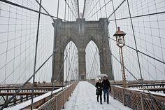 Brooklyn Bridge Net