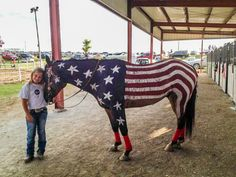 Patriotic Horses at the County Fair - 3 Quarters Today Cute Horses, Pretty Horses, Beautiful Horses, Fourth Of July Pics, 4th Of July Parade, Horse Halloween Costumes, Pet Costumes, Baby Animals, Cute Animals