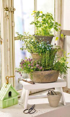 Mit diesem dekorativen Kräutergarten für die Fensterbank können Minze, Thymian & Co. immer frisch geerntet werden. Und ein toller Blickfang ist der Kräutergarten auch noch.