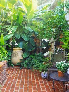 Container garden..