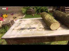 Pilze selber züchten: Immer frische Pilze auf dem Tisch | Servicezeit | WDR - YouTube