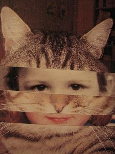 I think we should do this for our faces, spliced with cats, and hang in our living room.