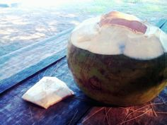 #coconut