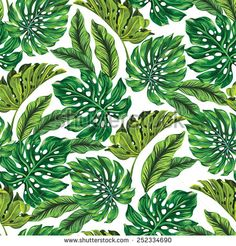 vector seamless tropical leaves pattern. strong greens leaves of exotic monstera plant. retro style illustration.