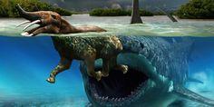Megalodon. Ce requin géant habitait notamment dans l'océan, mais cette image témoigne d'une hypothétique rencontre avec un Platybelodon , un mammifère préhistorique apparenté aux éléphants. Les os de ceux-ci présentaient parfois les signes évidents d'attaques de requins.