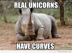 Real Unicorns have Curves!  #unicorn #lol #curves