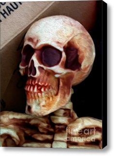 Skully Stretched Canvas Print / Canvas Art By Bruce Stanfield