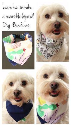 DIY Reversible layered dog Bandanas – Daily Fun DIYs