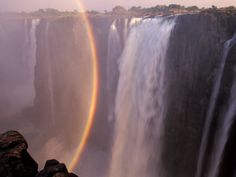 Victoria Falls---been here twice and absolutely love it! So serene and beautiful! Beautiful World, Beautiful Places, Forest Waterfall, Victoria Falls, Poster Prints, Art Prints, Fall Is Here, Amazing Nature, Mother Nature