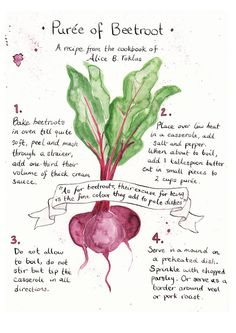 beetroot puree illustrated recipe:::love the drawing style.   Can't be convinced yet on beets!