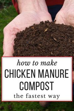 Composting Hacks How to make the BEST chicken manure compost, really quickly. Garden-ready in just 18 days! - Did you know you can compost chicken manure into good, garden-ready black gold.in just 18 days? Chicken Coop Plans, Building A Chicken Coop, Diy Chicken Coop, Chicken Tractors, Chicken Feeders, Keeping Chickens, Raising Chickens, Pet Chickens, Urban Chickens