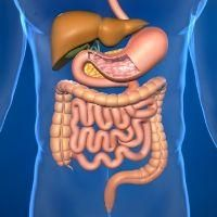 Find information on symptoms, treatment, prevention and more for crohn's disease from SymptomFind.com.