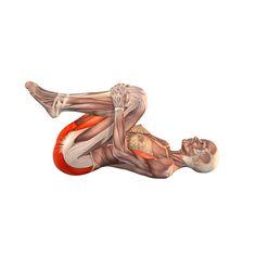 Knee press, both legs - Pavanamuktasana - Yoga Poses | YOGA.com