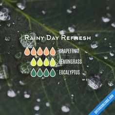 Rainy Day Refresh - Essential Oil Diffuser Blend