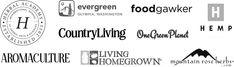 Elderberry Gummies, Elderberry Syrup, Elderberry Recipes, Kosher Dill Pickles, Fermented Honey, Mead Recipe, Sage Recipes, Mint Shampoo, Edible Mushrooms