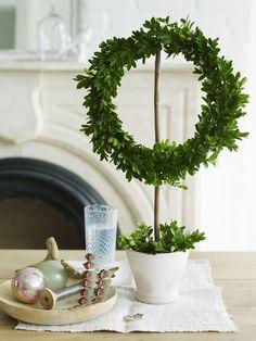 topiary wreath