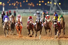 CALIFORNIA CHROME wins the Dubai World Cup in Meydan, for Art Sherman and Victor Espinosa despite saddle difficulties in the latter part of the race. Horse Racing Tips, Race Horses, Derby Horse, Dubai World, Emirates Airline, Richest In The World, Horse World, Sports Wallpapers, Thoroughbred