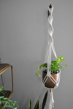 Check out this item in my Etsy shop https://www.etsy.com/listing/507345518/muna-o-handmade-modern-macrame-plant