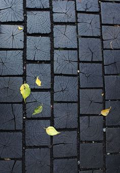 Beautiful texture: cool interior design ideas, also great for your garden, Charred wood walkway