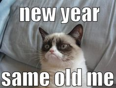 Grumpy Cat Super Bowl: I hope both teams lose! I guess grumpy cat isn't picking a winner in the super bowl this year. The baltimore ravens vs the san francisco Meme Grumpy Cat, Grumpy Cat Good, Grumpy Kitty, Memes Humor, Funny Memes, Hilarious Jokes, Funny Videos, Cute Cats, Funny Cats