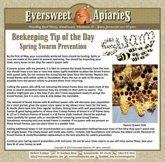 Beekeeping Tip of the Day - Swarm Prevention