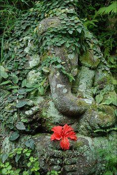 ✯ Flower for Ganesh ✯ Ganesh is the most loved god among the Hindus. Sri Ganesh, Lord Ganesha, Om Gam Ganapataye Namaha, Expos Paris, Indian Gods, Gods And Goddesses, Shiva, Elephant, Around The Worlds