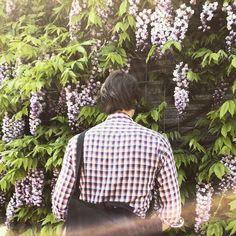 #tbt to our NW messenger enjoying that amazing spring wisteria #createwhereyouwant