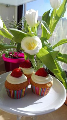 Cupcakes cu iaurt de capsune si crema de branza/ Cupcakes with strawberry yogurt and cream cheese frosting Strawberry Cupcakes, Cream Cheese Frosting, Yogurt, Muffins, Pudding, Desserts, Food, Tailgate Desserts, Muffin