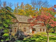 10 Cool Facts About Log Cabins ... Just for You!