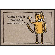 Never Used Catnip Doormat