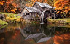 Jesień, Młyn, Rzeka, Most, Las, Drzewa