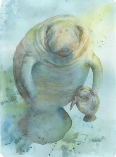 PRINT manatee 8 x 10 bowman open edition seacow by happypaints, $15.00