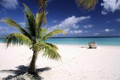 France, New Caledonia, Iles de Loyauté, Ouvea, a beach
