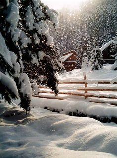 I love snow scenes. Winter Szenen, I Love Winter, Winter Magic, Winter Season, I Love Snow, Snowy Day, Snowy Woods, Snow Scenes, All Nature