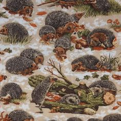 NX Hedgehog 1/2 METRE - view 2