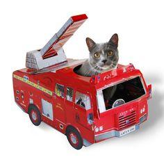 LOL OMG - Cat Playhouse Fire Engine...