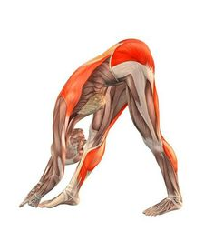 super ideas for fitness inspiration tips yoga poses Kundalini Yoga, Yoga Ashtanga, Bikram Yoga, My Yoga, Yoga Meditation, Fitness Workouts, Fitness Del Yoga, Yoga Moves, Yoga Exercises