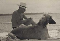 Picasso and his beloved Afghan hound at the beach together enjoying the day.....