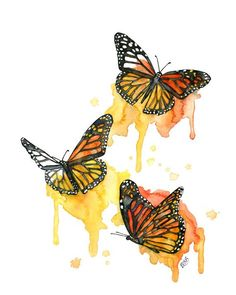 Acuarela de la mariposa monarca impresión por TheColorfulCatStudio