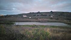 Tamaraceite: Las aves migrotarias anidan en las Charcas de San ...