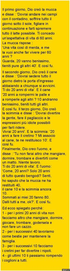 God created the cow and said-Dio creò la mucca e disse God created the cow and said - Truth Hurts, Funny Stories, Funny Cartoons, Make Me Smile, Are You Happy, Have Fun, Comedy, Funny Quotes, How Are You Feeling