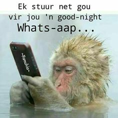 Good Night Quotes, Good Morning Good Night, Goeie Nag, Memes, Afrikaans, Special Quotes, Humor, Just For Laughs, Einstein
