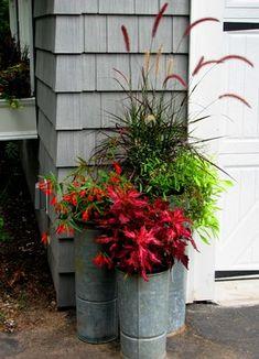 Container Gardens Design Ideas.
