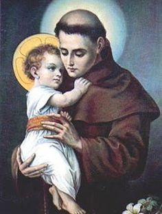 Santo Franciscano do dia -13/06 - Santo Antônio de Pádua   Sacerdote, doutor Evangélico da Primeira Ordem (1191-1231). Canonizado por Gregório IX no dia 30 de maio de 1232