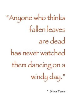 Autumn ~ U201cAnyone Who Thinks Fallen Leaves Are Dead Has Never Watched Them  Dancing On A Windy Day.