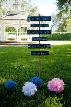 Ideas for an Outdoor Gender Reveal Party.